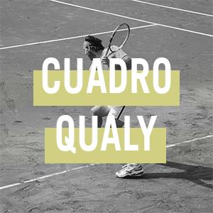 CUADRO QUALY